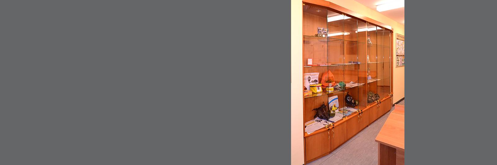 Школьная витрина для кабинета ОБЖ по индивидуальным размерам