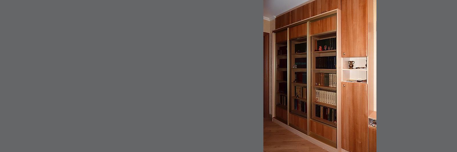 Шкаф-купе для книг со стеклом и антресолями